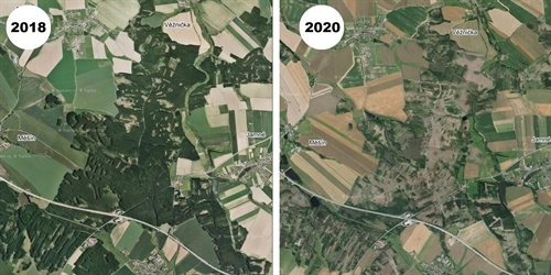 Mapy.cz has new aerial photos for the central part of the Czech Republic.  The forest disappeared on them, which was destroyed by drought and bark beetle - Živě.cz