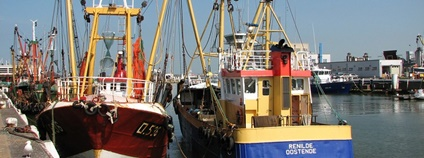 The island of Jersey has postponed new controversial rules for issuing fishing licenses