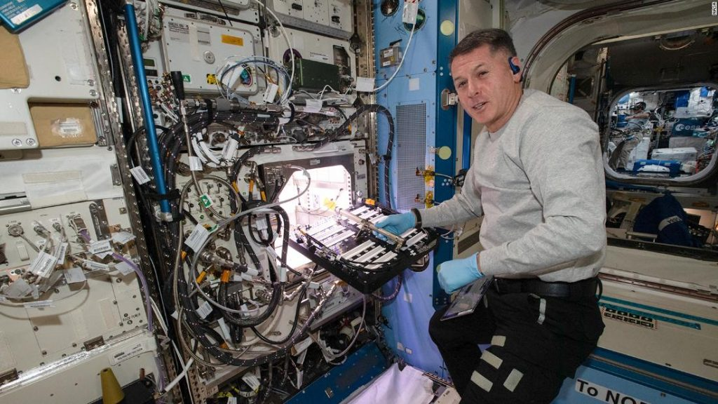 Astronauts on the International Space Station grow hot peppers for the first time for NASA