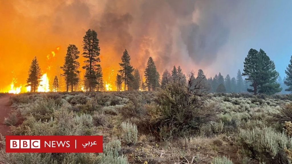 Wildfires: Thousands evacuated in Oregon