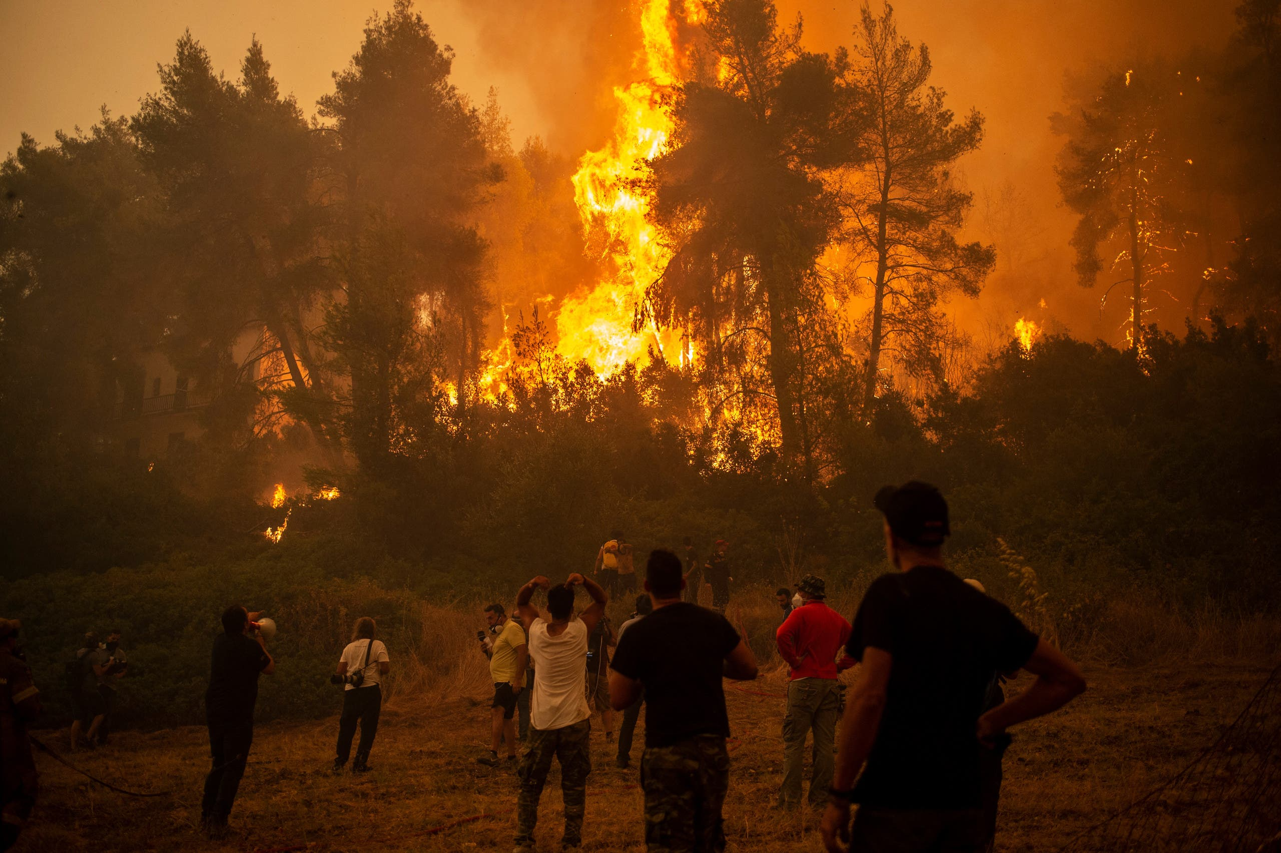 From the fires of Greece