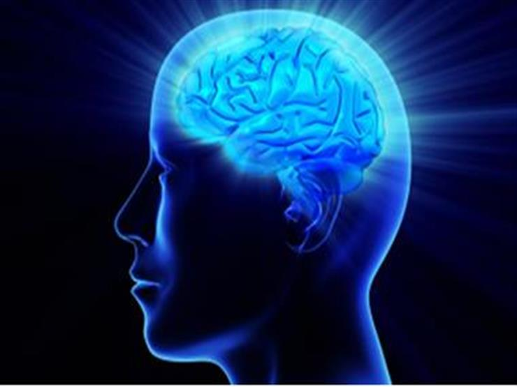 These foods are brain food.. They enhance its functions and improve memory and mood