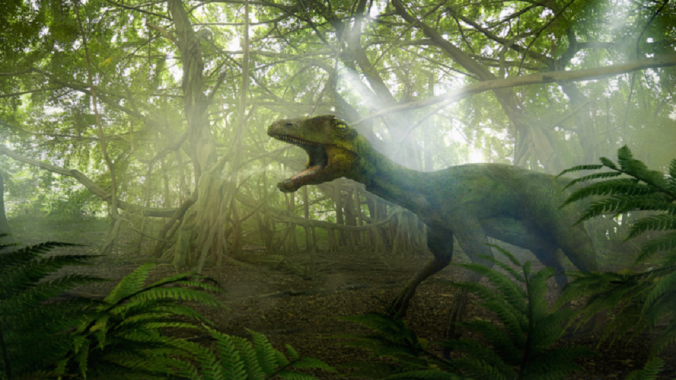 An important discovery of a 125 million-year-old dinosaur!