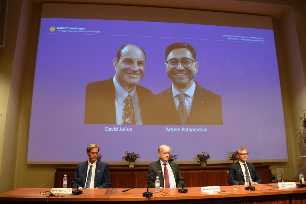 Who is the scientist born in Lebanon who won the Nobel Prize for Medicine in 2021?