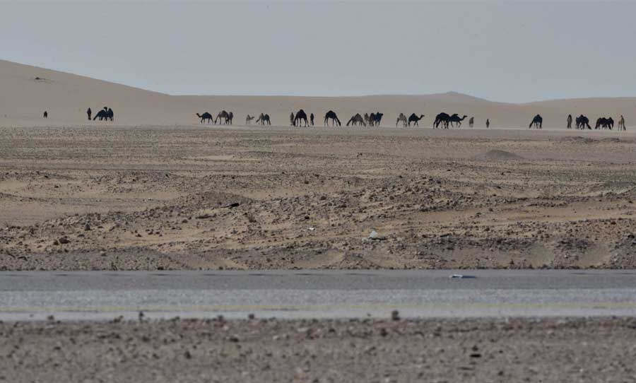 NASA plans to explore the desert waters in cooperation with the Qatar Foundation