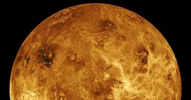What does Venus mean that it cannot host life in the future or the past?
